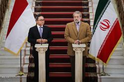 دیدار رئیس شورای مشورتی اندونزی با رئیس مجلس