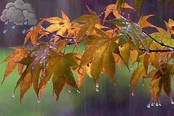 عبور سامانه بارشی از خراسان جنوبی/بارش ۵ میلیمتری باران در بیرجند