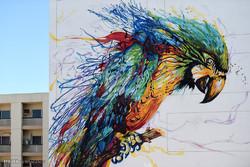 جشنواره موزه خیابانی در دوبی