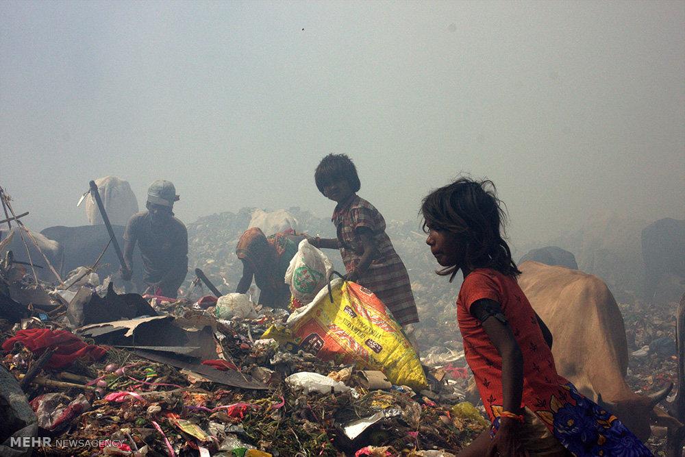 کودکان هندی در میان کوه های زباله
