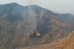 سقوط هواپیمای نظامی در پاکستان/ هر ۲ خلبان کشته شدند