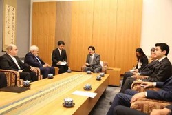 Zarif, Japanese PM examine bilateral ties