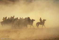 بزکشی در افغانستان