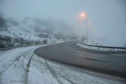 مه و کولاک برخی از جاده های زنجان را فرا گرفته است