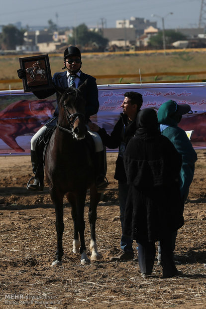 Racing horse skill show