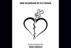 'One Kilogram of Fly Wings' goes to Hanoi Filmfest.