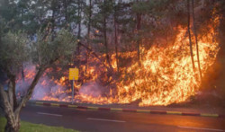 Israeli wildfires