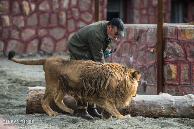 Qazvin nature village, an exceptional zoo