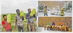 Iran, the country of simultaneous seasons