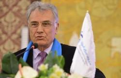 محمدرضا انصاری-کیسون