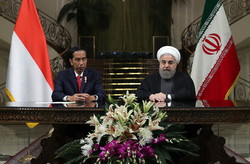 Strengthening Tehran, Jakarta ties to benefit both nations