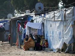 Book on refugee highlights hope for survival