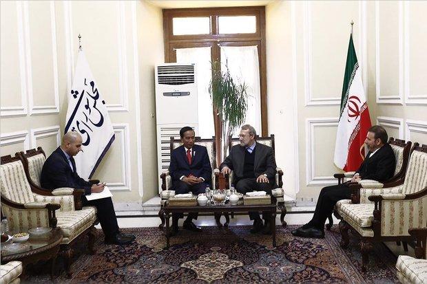 Iran, Indonesia to address 'Islamic world pressing issues'