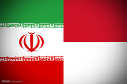 Value of Iran non-oil export to Indonesia up by 42% in H1