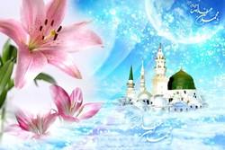وحدت مسلمانان عامل پیشرفت اسلام است/ آوای همدلی در نگارستان ایران