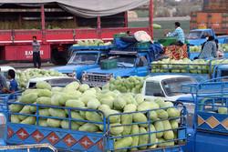 افزایش یکطرفه تعرفه واردات ترکیه هندوانه کاران ایرانی رامتضرر کرد