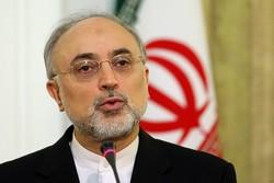 Salihi'den İran'ın nükleer reaktör şirketine ziyaret