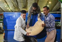 ۱۵ تن برنج در بین هیئتهای مذهبی کبودراهنگ توزیع شد