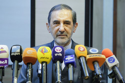 Velayati seeks closer Iran-Russia co-op in Syria