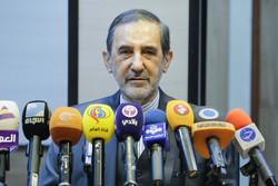 Velayati seeks closer Iran-Russia co-op in Syria