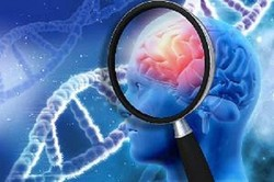 تحصیلات عالی روند شروع آلزایمر را کُند می کند