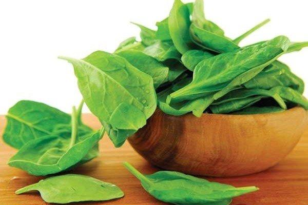 منابع گیاهی حاوی آهن را بشناسید,
