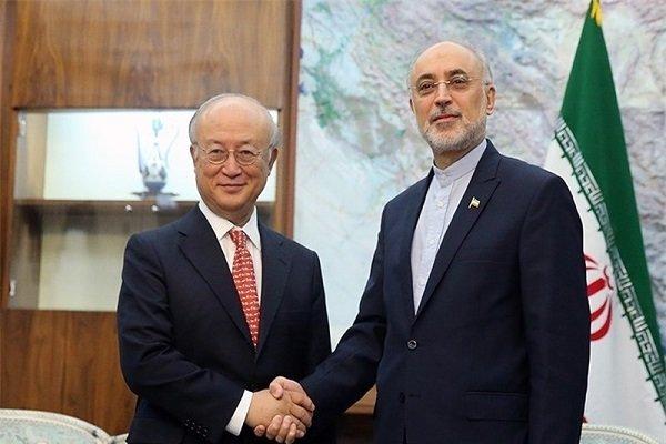 Iran talks nuclear propulsion development with IAEA