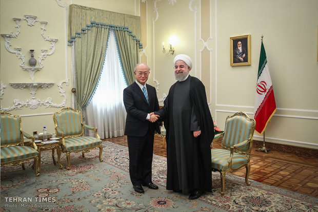 IAEA's Amano holds talks with Rouhani in Tehran