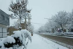 İran'da kar yağışı / Video