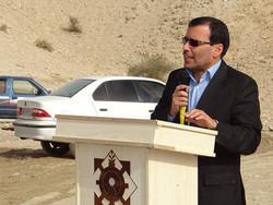 ۵۱۳ نفر داوطلب شورای شهر و روستا در شهرستان دشتی شدند
