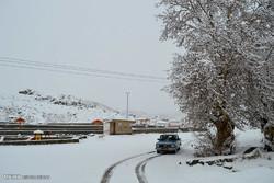 بارش برف در اولین روز زمستان در شهرستان میامی
