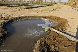 کشاورزی همدان و بازدهی اندک در مصرف آب/تهدید خاموش فروچالهها