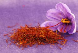 Iran's saffron exports top $117mn in eight months