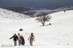 Families and friends have taken the opportunity for snow tubing, an exhilarating experience, in snow covered heights of Bojnourd, northeastern Iran