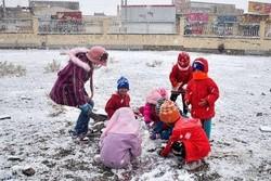 بارش برف و تعطیلی مدارس