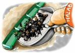 الإرهاب والباص الأخضر !(2)