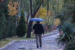 خوزستانی ها منتظر بارش خوب باران باشند/سیل هم در راه است