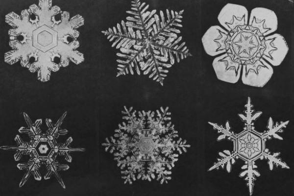 تخمین تعداد اشکال مختلف دانه های برف/ ۱ و ۷۶۸ صفر مقابل آن!,