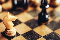 National chess players competing in World Rapid C'ship