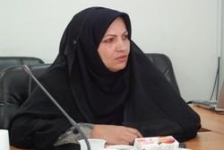 ۲۳۸ صندوق اعتباری خرد زنان روستایی در خراسان جنوبی فعال است
