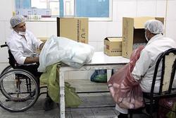 اشتغال معلولان