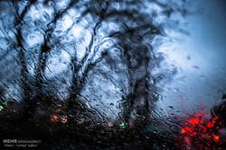 انعکاس /  تصاویر ثبت شده از حال و هوای شهر قزوین در روزهای بارانی.