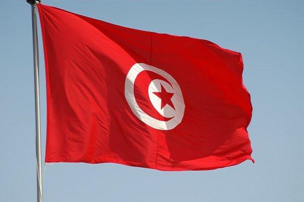 نتایج شمارش اولیه آرای انتخابات تونس/میزان مشارکت ۴۵ درصد