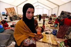 شماری از پناهجویان افغانستانی از آلمان به کشور خود بازگردانده شدند