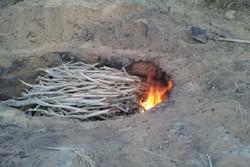 ۴ کوره سنتی غیرمجاز تولید زغال در لردگان شناسایی شد