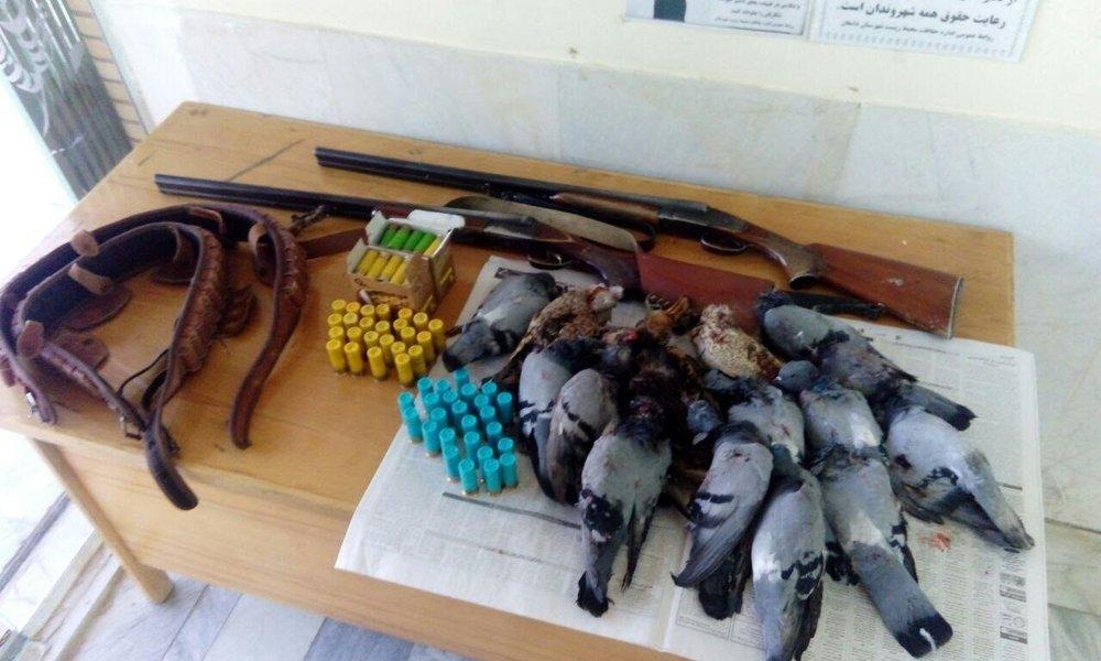 کشور های مهاجر پذیر در سال 2017 شکار پرندگان مهاجر وحشی در سراسر کشور ممنوع شد - خبرگزاری ...