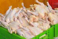 گوشت مرغ به میزان کافی در کرمان وجود دارد/نیاز بازار علت تنش قیمتی