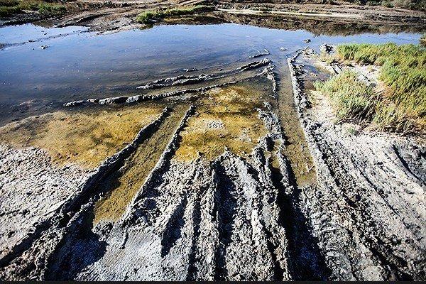 اثبات انباشت فلزات سنگین در تالاب گاوخونی/سونامی نمک نزدیک است