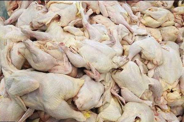 مرغ منجمد ۲۰۰ تومان ارزان شد/قیمت به ۵۷۰۰ تومان رسید