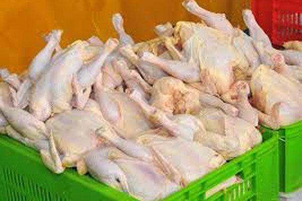 توقیف محموله ۲ تنی گوشت مرغ فاسد در اردبیل